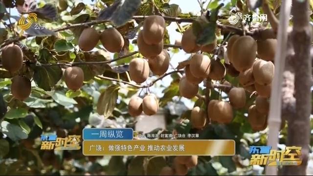 广饶:做强特色产业 推动农业发展