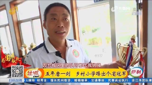 潍坊:五年磨一剑 乡村小学踢出个省冠军