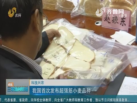 【科技兴农】我国首次发布超强筋小麦品种