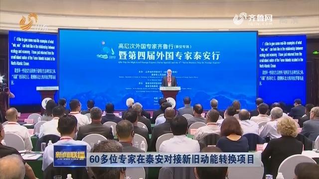 60多位外国专家在泰安对接新旧动能转换项目