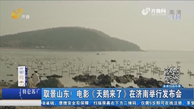 取景山东!电影《天鹅来了》在济南举行发布会