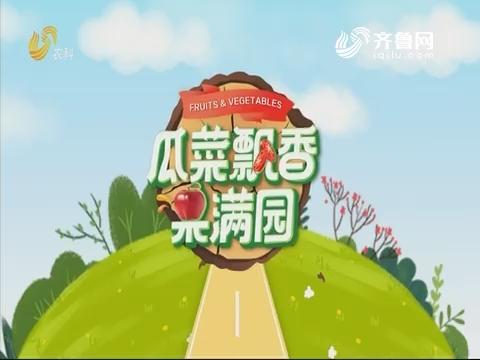 2019年09月09日《亲土种植•瓜菜飘香果满园》完整版