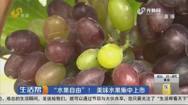 """""""水果自由""""!美味水果集中上市"""