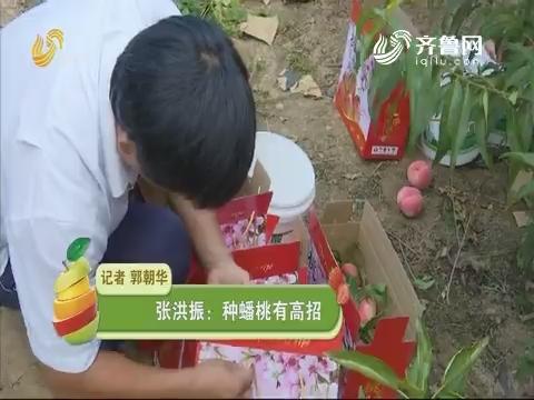 张洪振:种蟠桃有高招