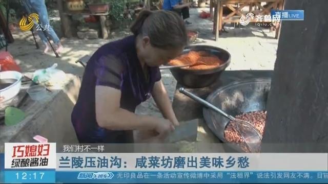 【我们村不一样】兰陵压油沟:咸菜坊磨出美味乡愁