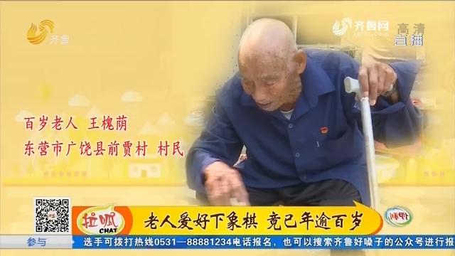 东营:老人爱好下象棋 竟已年逾百岁