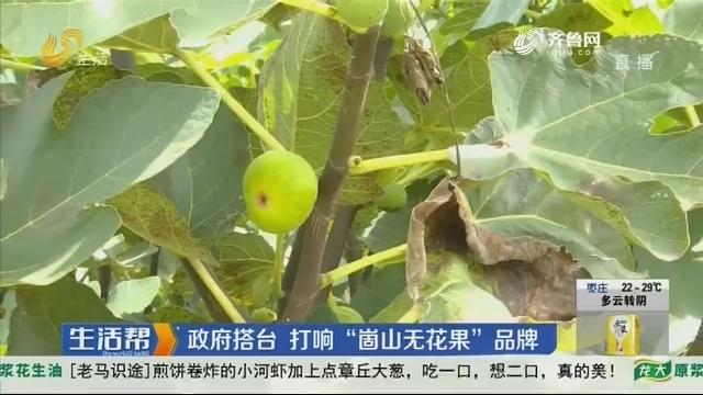 威海:九月果飘香 无花果迎丰收