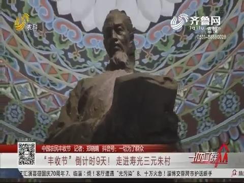 """【中国农民丰收节】""""丰收节""""倒计时9天!走进寿光三元朱村"""