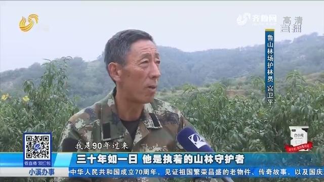 淄博:三十年如一日 他是执着的山林守护者