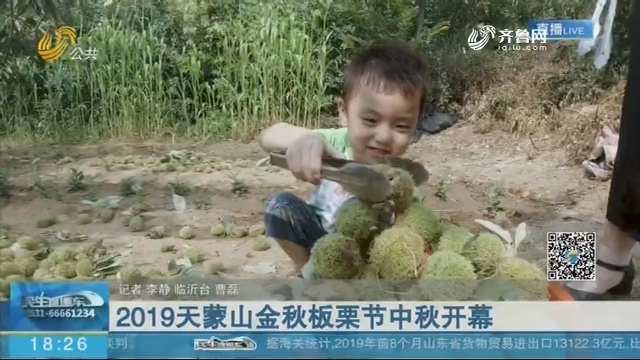 临沂:2019天蒙山金秋板栗节中秋开幕