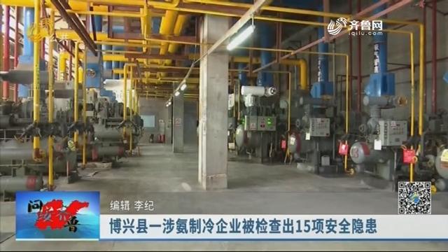 20190915《问安齐鲁》:博兴县一涉氨制冷企业被检查出15项安全隐患