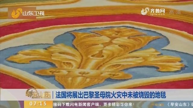 法国将展出巴黎圣母院火灾中未被烧毁的地毯