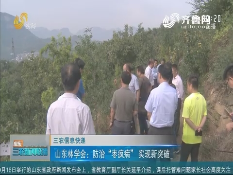 """【三农信息快递】山东林学会:防治""""枣疯病""""实现新突破"""
