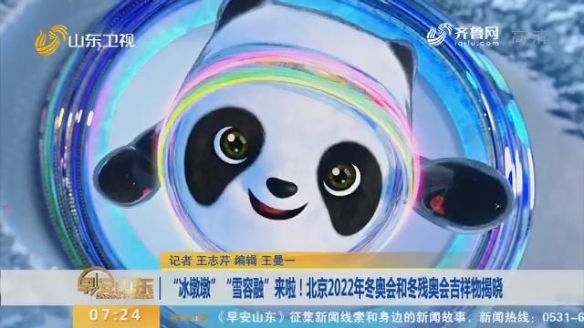 """""""冰墩墩""""""""雪容融""""来啦!北京2022年冬奥会和冬残奥会吉祥物揭晓"""
