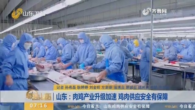 【闪电新闻排行榜】山东:肉鸡产业升级加速 鸡肉供应安全有保障
