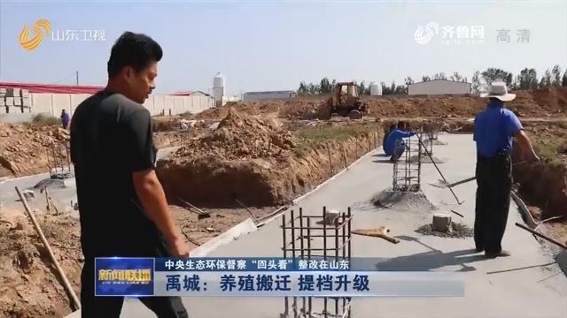 """【中央生态环保督察""""回头看""""整改在山东】禹城:养殖搬迁 提档升级"""