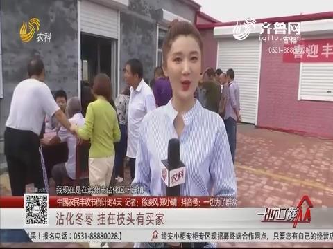 【中国农民丰收节倒计时4天】沾化冬枣 挂在枝头有买家
