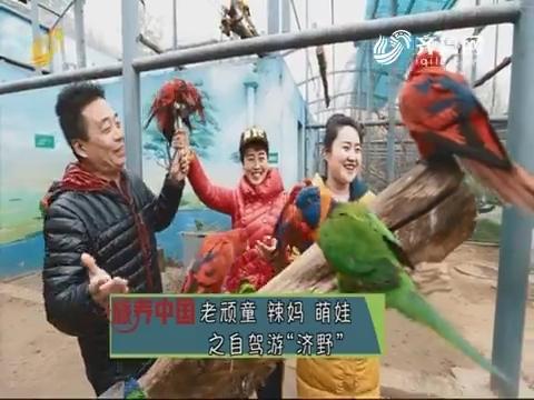 """20190920《旅养中国》:老顽童 辣妈 萌娃之自驾游""""济野"""""""