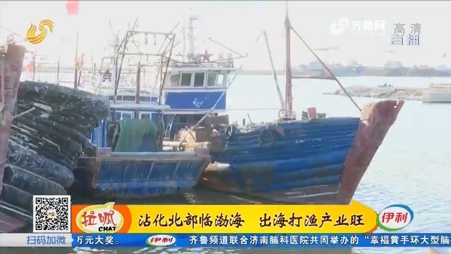 沾化北部临渤海 出海打渔产业旺