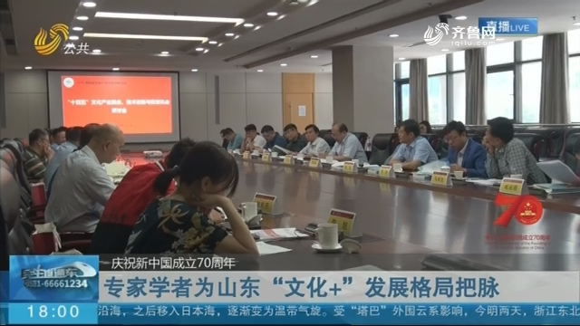 """【庆祝新中国成立70周年】济南:专家学者为山东""""文化+""""发展格局把脉"""