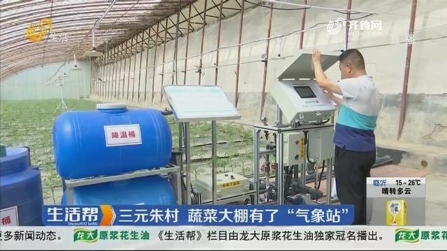 """潍坊:三元朱村 蔬菜大棚有了""""气象站"""""""