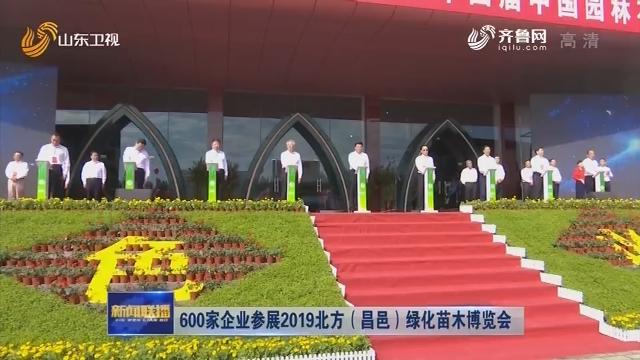600家企业参展2019北方(昌邑)绿化苗木博览会