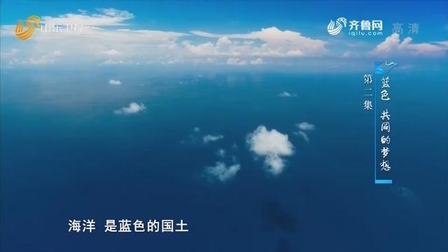 奋进新山东——第二集:蓝色 共同的梦想