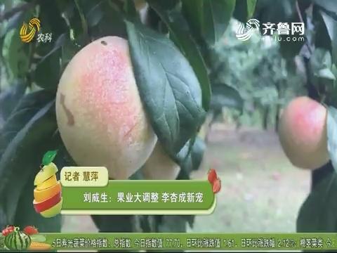 刘威生:果业大调整 李杏成新宠