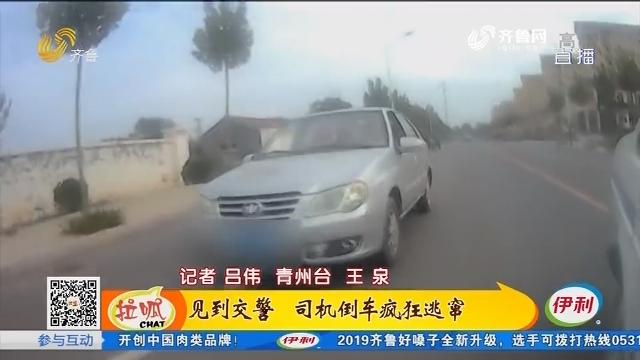 青州:见到交警 司机倒车疯狂逃窜