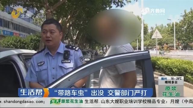 """淄博:""""带路车虫""""出没 交警部门严打"""