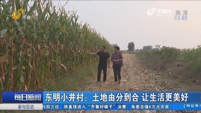 东明小井村:土地由分到合 让生活更美好