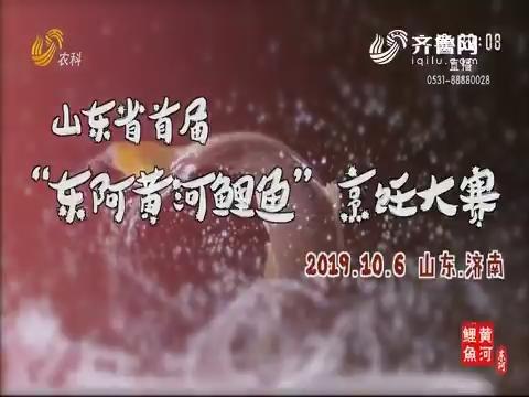 """山东省首届""""东阿黄河鲤鱼""""烹饪大赛"""
