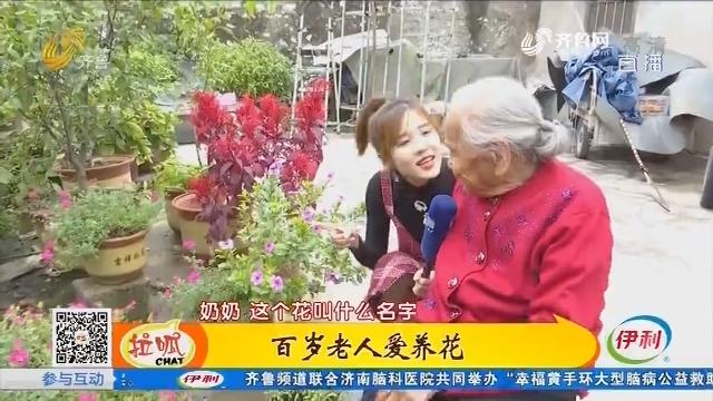 临沂:百岁老人爱养花