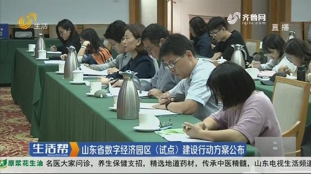 山东省数字经济园区(试点)建设行动方案公布