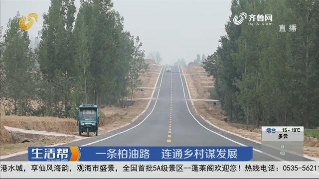 临沂:一条柏油路 连通乡村谋发展