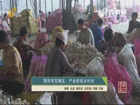 菏泽市定陶区:产业旺促乡村兴