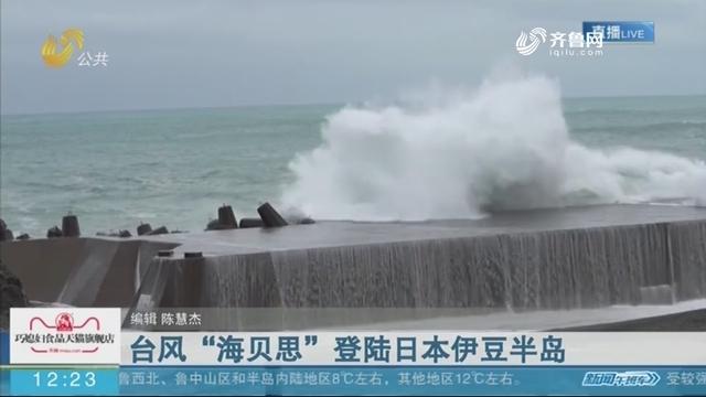 """台风""""海贝思""""登陆日本伊豆半岛"""