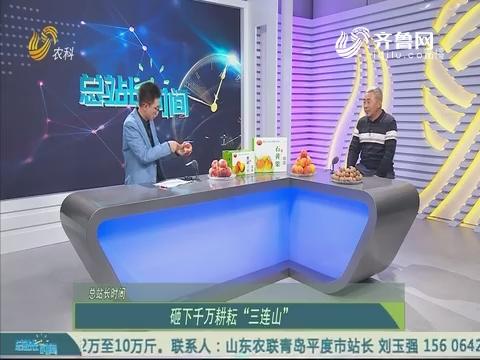20191013《总站长时间》:乡村振兴 有我力量——杨月亭 李伶堂 孙聚峰