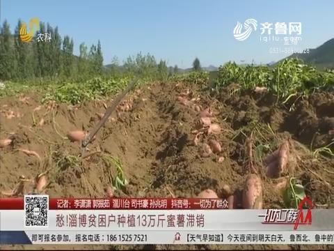 愁!淄博贫困户种植13万斤蜜薯滞销