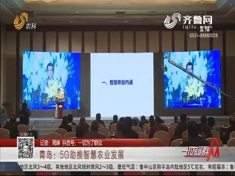 青岛:5G助推智慧农业发展