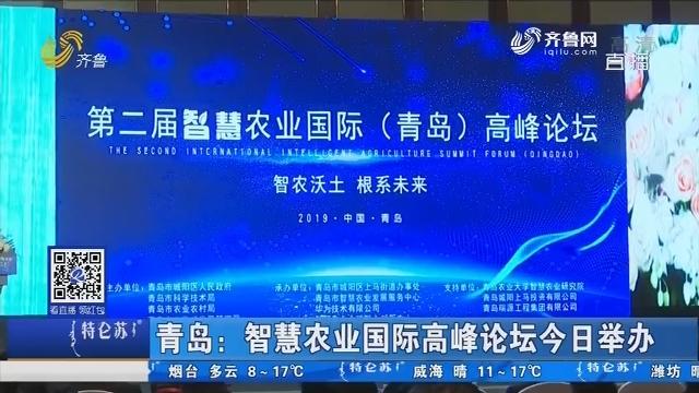 青岛:智慧农业国际高峰论坛15日举办