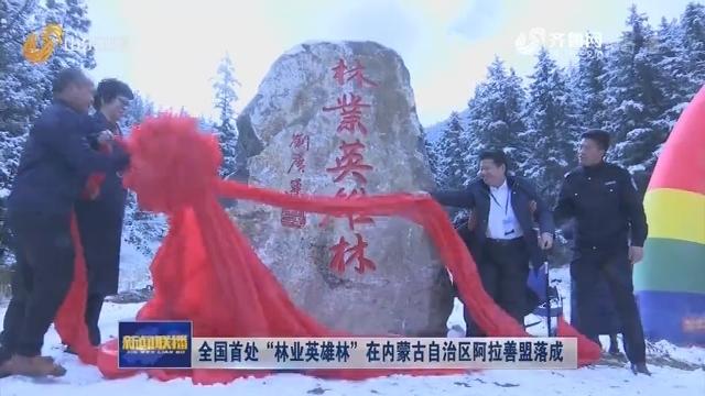 """全国首处""""林业英雄林""""在内蒙古自治区阿拉善盟落成"""
