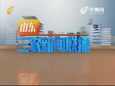 2019年10月16日山东三农新闻联播完整版