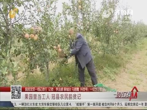 【脱贫攻坚一线记者行】果园里当工人 冠县农民脱贫记