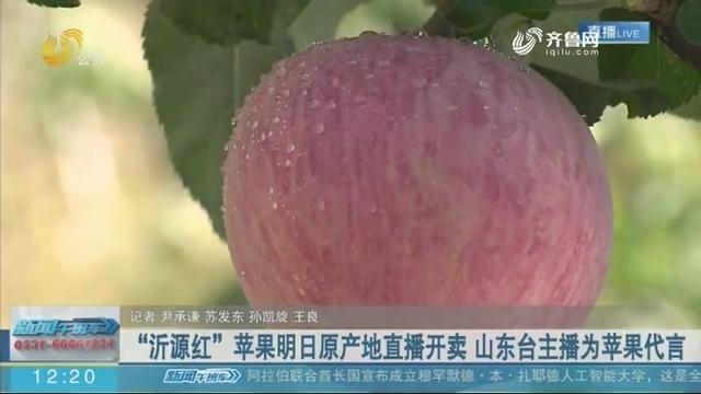 """""""沂源红""""苹果10月19日原产地直播开卖 山东台主播为苹果代言"""