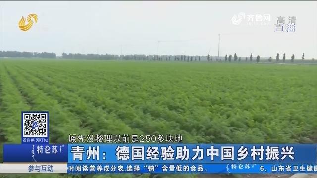青州:德国经验助力中国乡村振兴