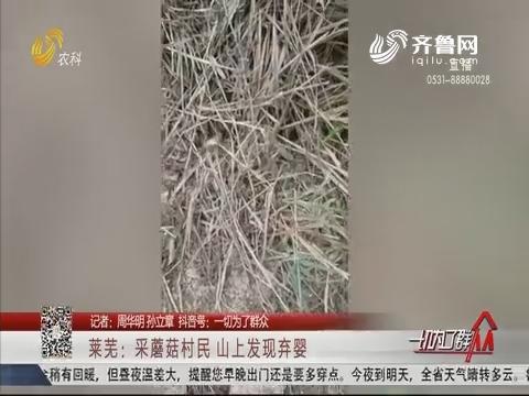 莱芜:采蘑菇村民 山上发现弃婴