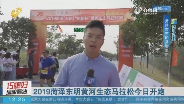 【闪电连线】2019菏泽东明黄河生态马拉松10月20日开跑