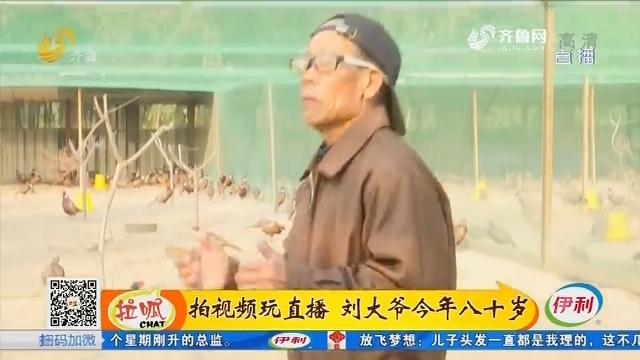 宁阳:拍视频玩直播 刘大爷今年八十岁