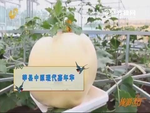 20191023《旅游365》:莘县中原现代嘉年华